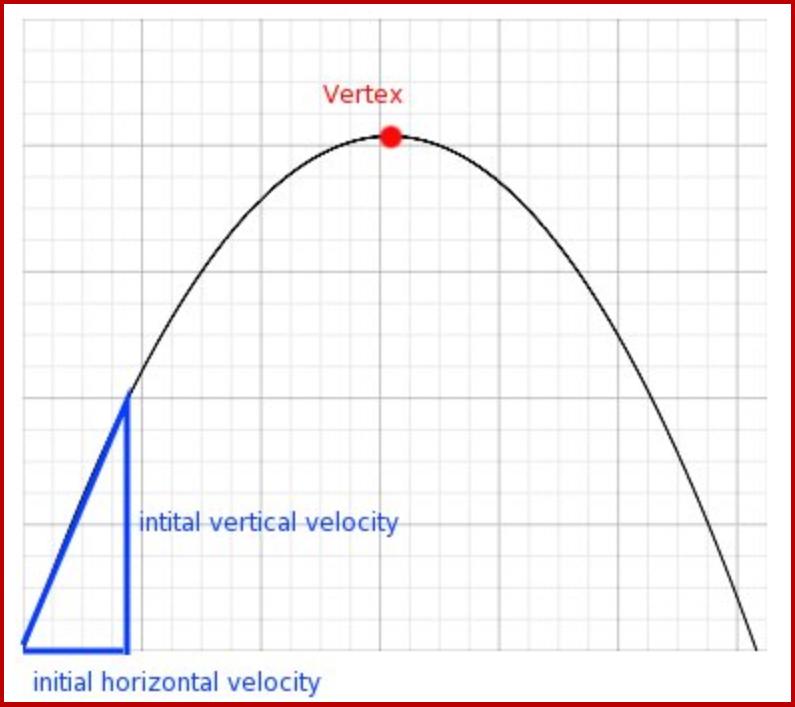 Baseball parabolic arc